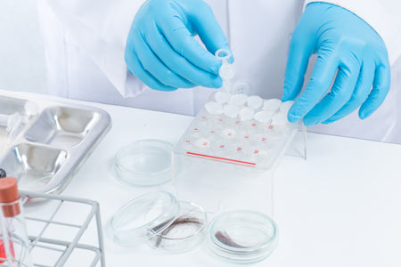 drug testing of hair in lab